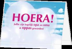 Ongekend Opa of Oma geworden kaartje | Stuur een kaart | Kaartjeposten.nl SP-63